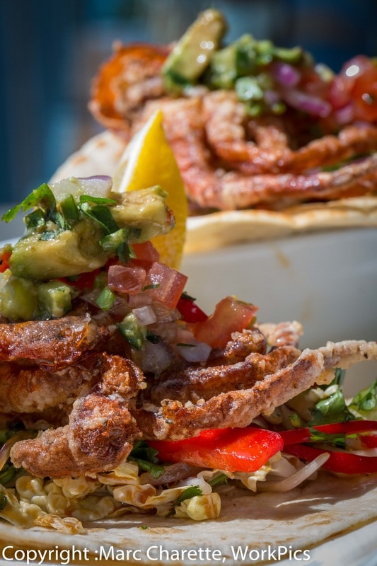 Commercial photography of plated soft shell crab at restaurant